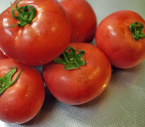 tomatop1.jpg
